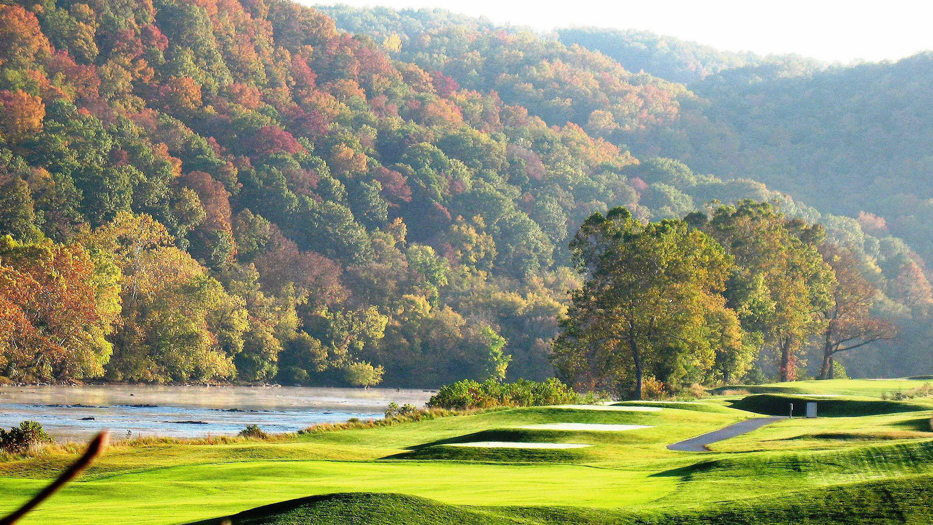 trees in the fall over pete dye river golf course